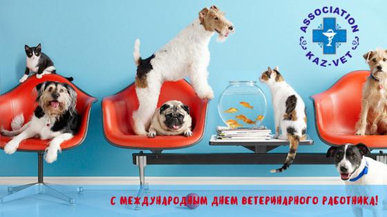 картинка с днем ветеринарного работника